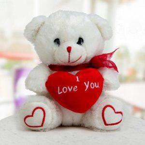 floragalaxy online teddy delivery chandigarh2