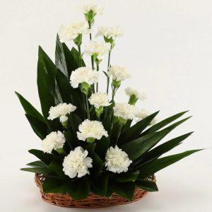 floragalaxy online flower delivery chandigarh62