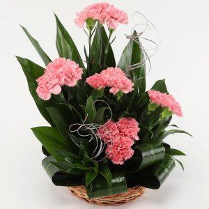 floragalaxy online flower delivery chandigarh44